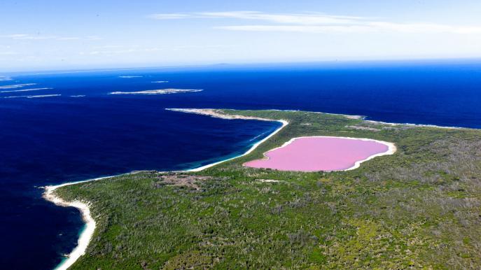 Озеро Хиллиер | http://www.australia.com/en/places/wa/pink-lake.html