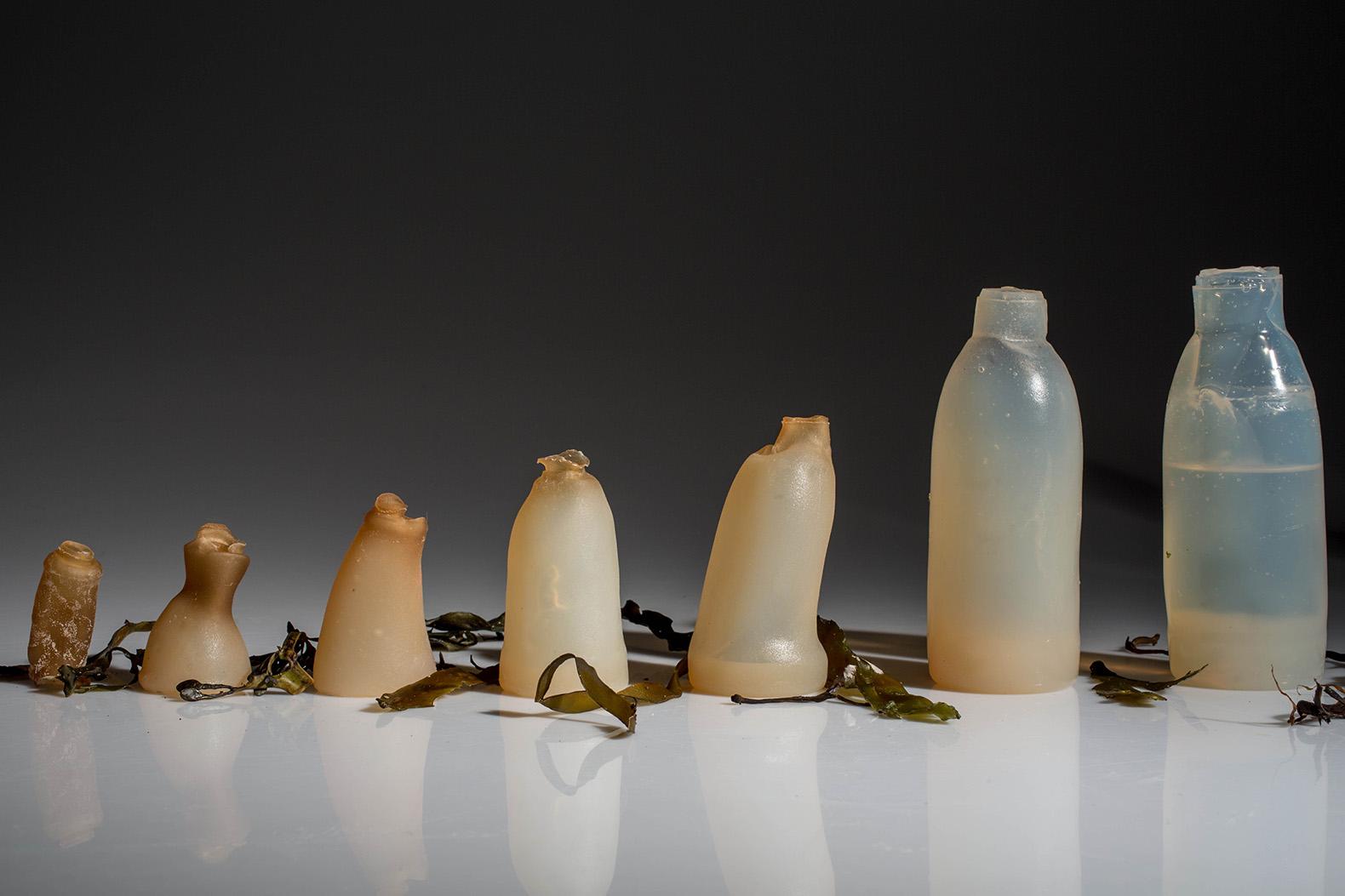 Algae-Water-Bottle-Ari-Jónsson
