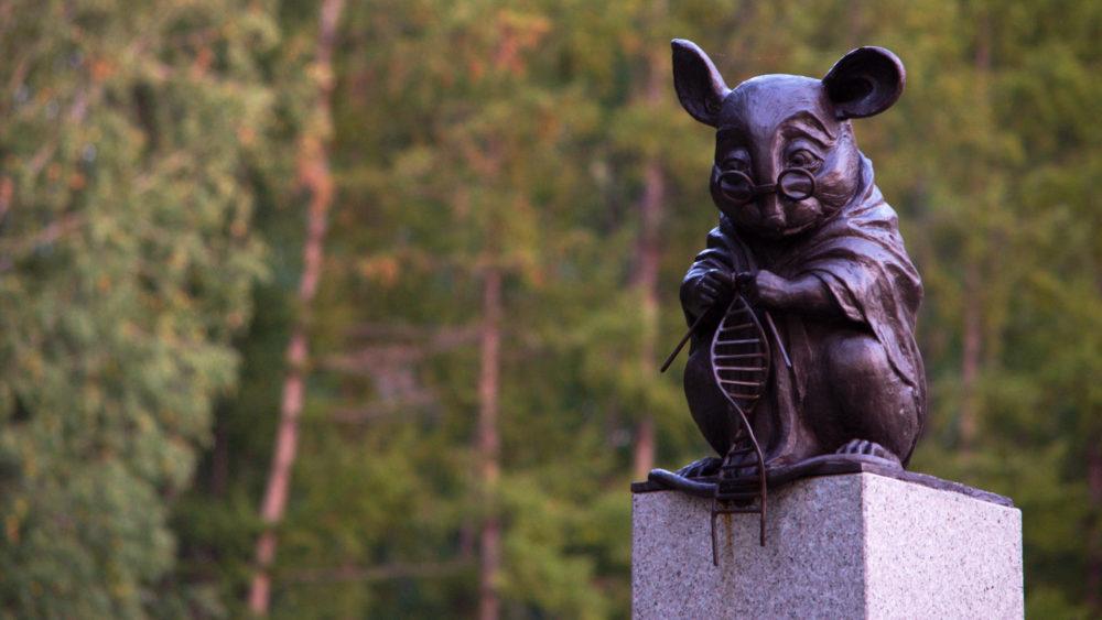 Памятник лабораторной мыши, г. Новосибирск | wikipedia