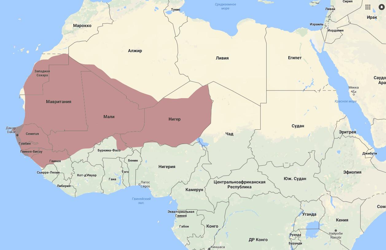 Империя Мали в начале 14 века на современной карте Африки