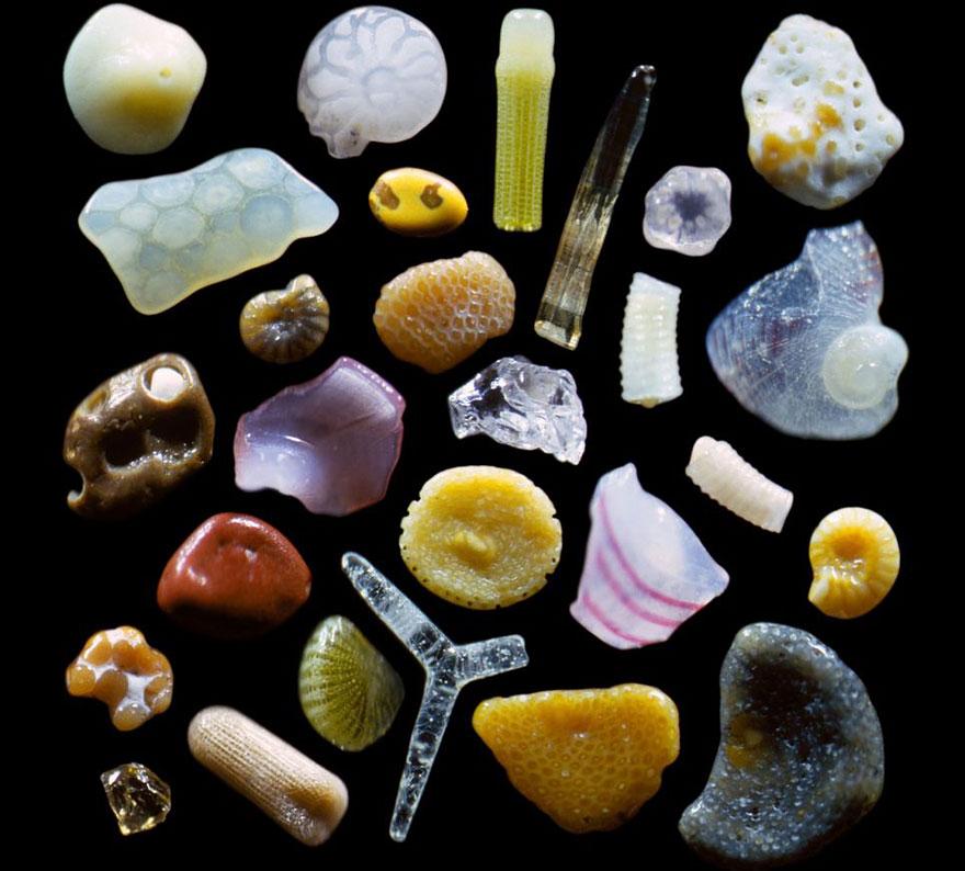 Перед вами - частицы песка с пляжа одного из Гавайских островов. Кто бы мог подумать, бродя по пляжу, что под ногами у него находятся миллионы природных произведений искусств? | http://sandgrains.com